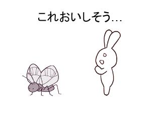 4コマ漫画「コオロギのお団子」の1コマ目