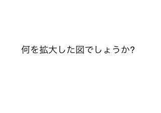 4コマ漫画「ぱない、ブランド力」の2コマ目