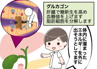 4コマ漫画「糖尿病だとGLP1で体重が減りにくい!?」の1コマ目