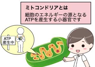 4コマ漫画「ミトコンドリアを活性化する新薬とは?」の1コマ目