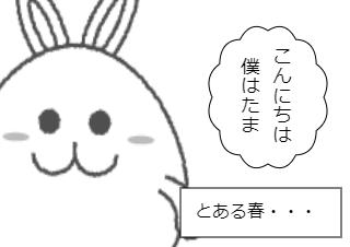 4コマ漫画「たまの春夏秋冬」の1コマ目