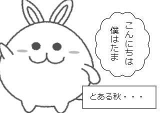 4コマ漫画「たまの春夏秋冬」の3コマ目