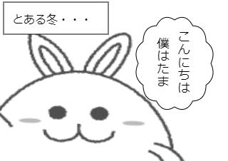 4コマ漫画「たまの春夏秋冬」の4コマ目