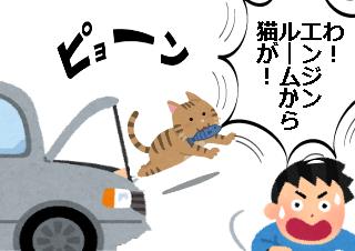4コマ漫画「猫だらけの教習所」の3コマ目