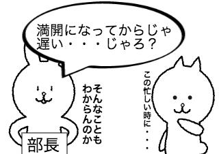 4コマ漫画「花見の場所取り」の2コマ目